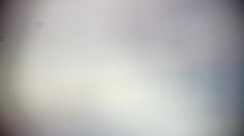 Live Camera from Maryland Zoo, Baltimore, MD 21217