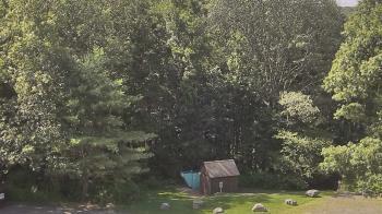 Live Camera from John Dorr Nature Lab-Horace Mann School, Washington, CT 06793