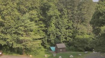 Live Camera from John Dorr Nature Lab-Horace Mann School, Washington, CT