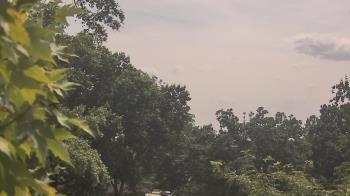 Live Camera from Good Shepherd Catholic Montessori, Cincinnati, OH