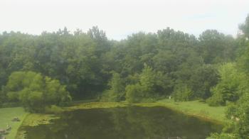 Live Camera from Crawford Park District Nature Center, Crestline, OH