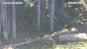 Live Camera from Crystal Mountain Inc, Enumclaw, WA