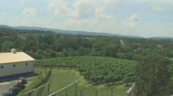 Live Camera from Barrel Oak Winery, Delaplane, VA