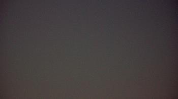 Live Camera from Moody Gardens, Inc., Galveston, TX