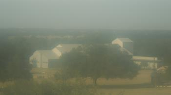 Live Camera from Camp for All, Burton, TX