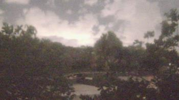 Live Camera from Zoo Miami, Miami, FL