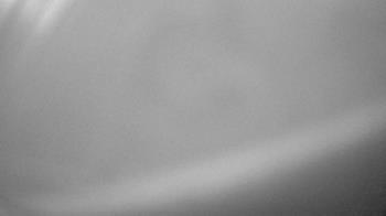 Live Camera from Zoo Miami, Miami, FL