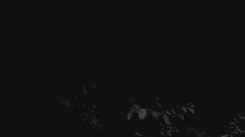 Live Camera from Cincinnati Nature Center, Milford, OH