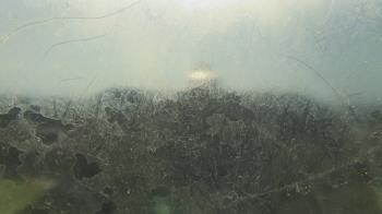 Live Camera from Holy Cross School, New Orleans, LA 70117