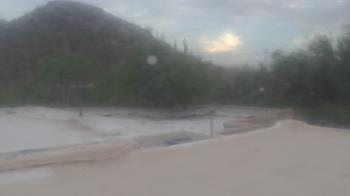 Live Camera from Desert Botanical Garden, Phoenix, AZ