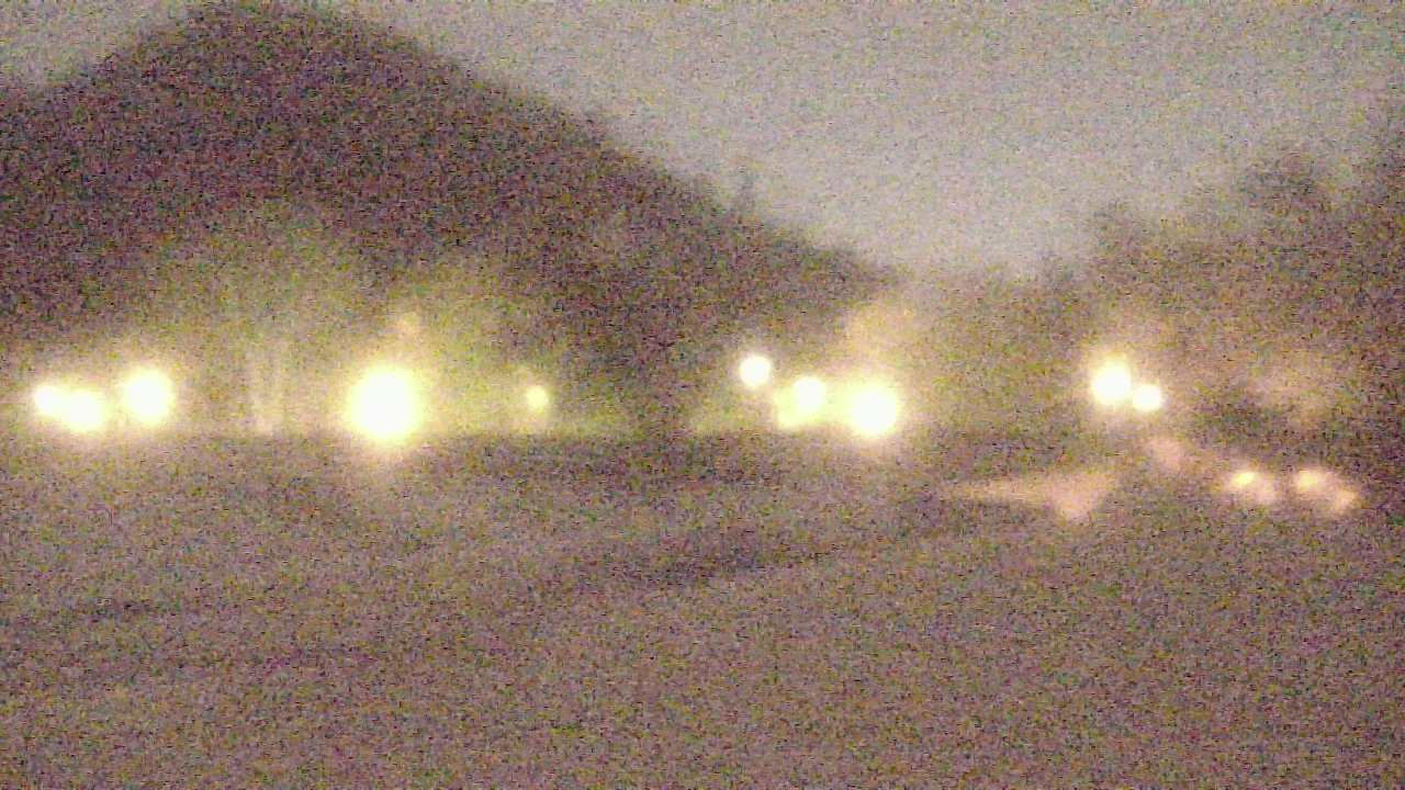 Live Camera from Desert Botanical Garden, Phoenix, AZ 85008