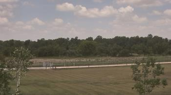 Live Camera from Long Acres Ranch, Richmond, TX