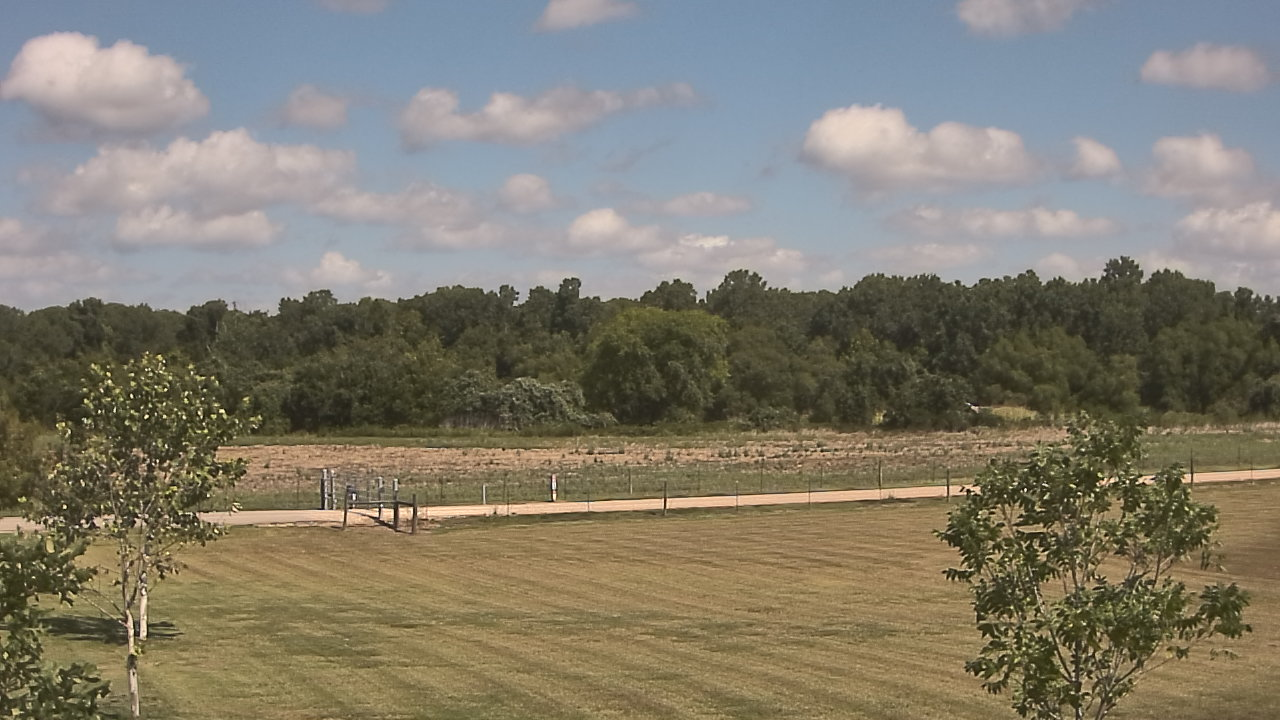 Live Camera from Long Acres Ranch, Richmond, TX 77469