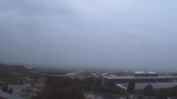 Live Camera from Red Butte Garden, Salt Lake City, UT 84108