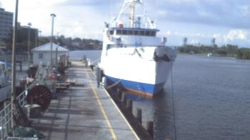 Live Camera from Cape Fear Community College, Wilmington, NC
