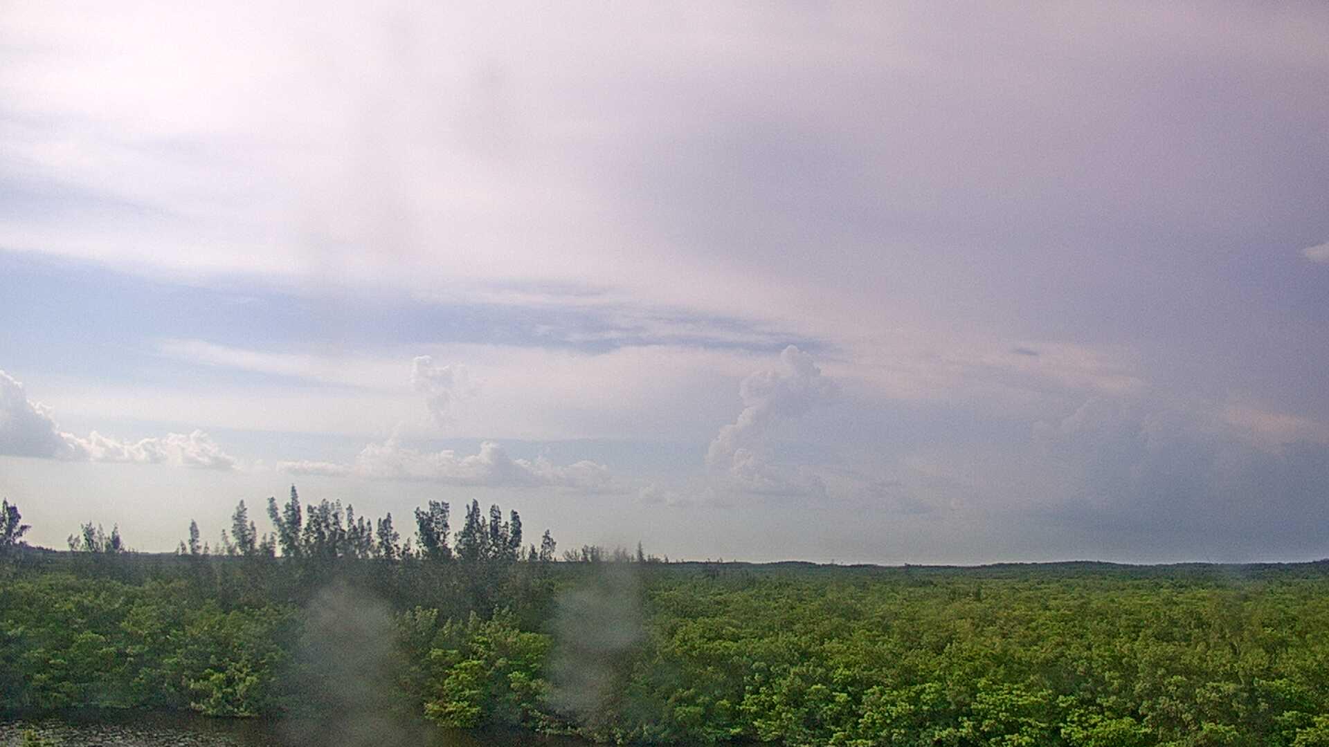 Camera from: WTSP-TV,  Saint Petersburg,  FL