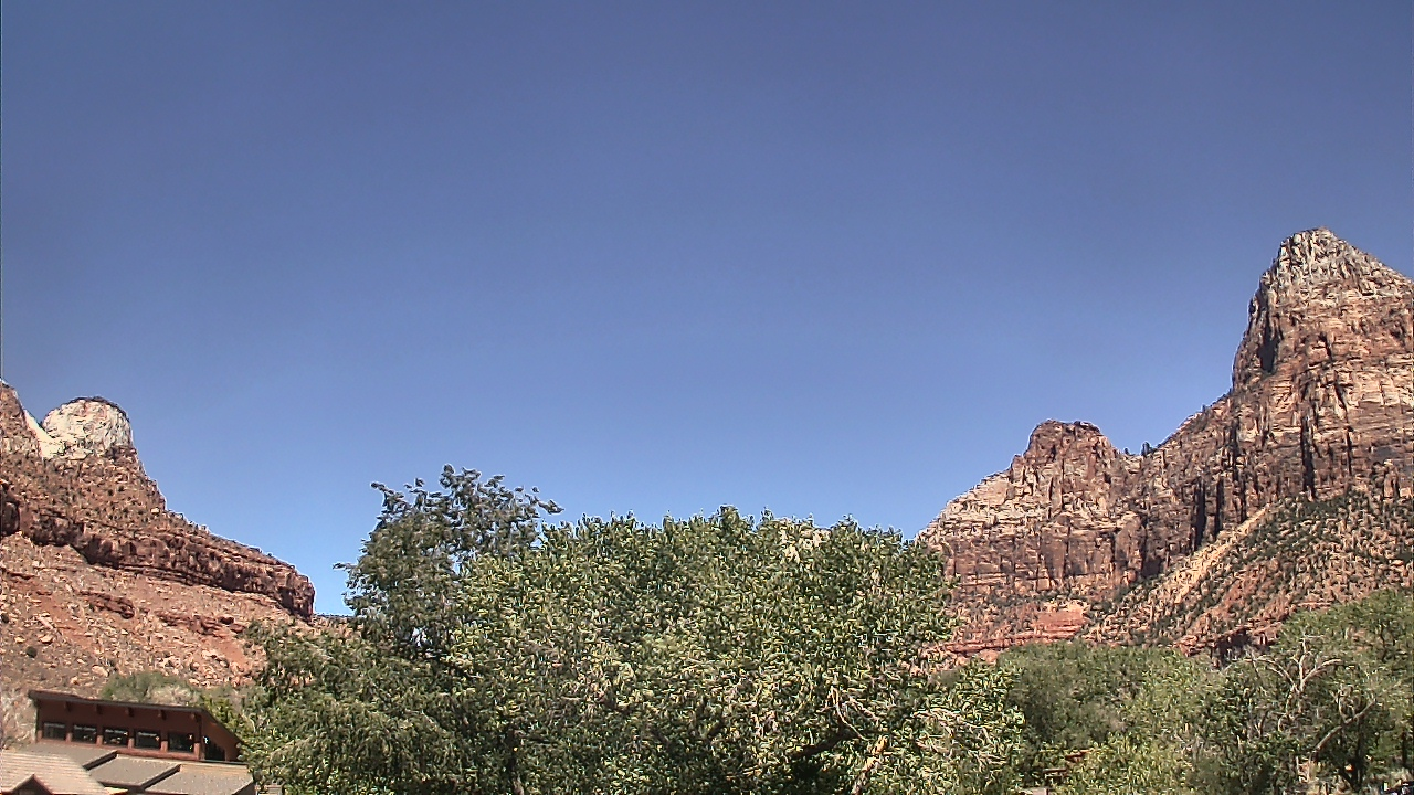 Watchman View